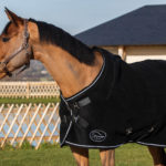 Pro Confort therapeutic horse blanket